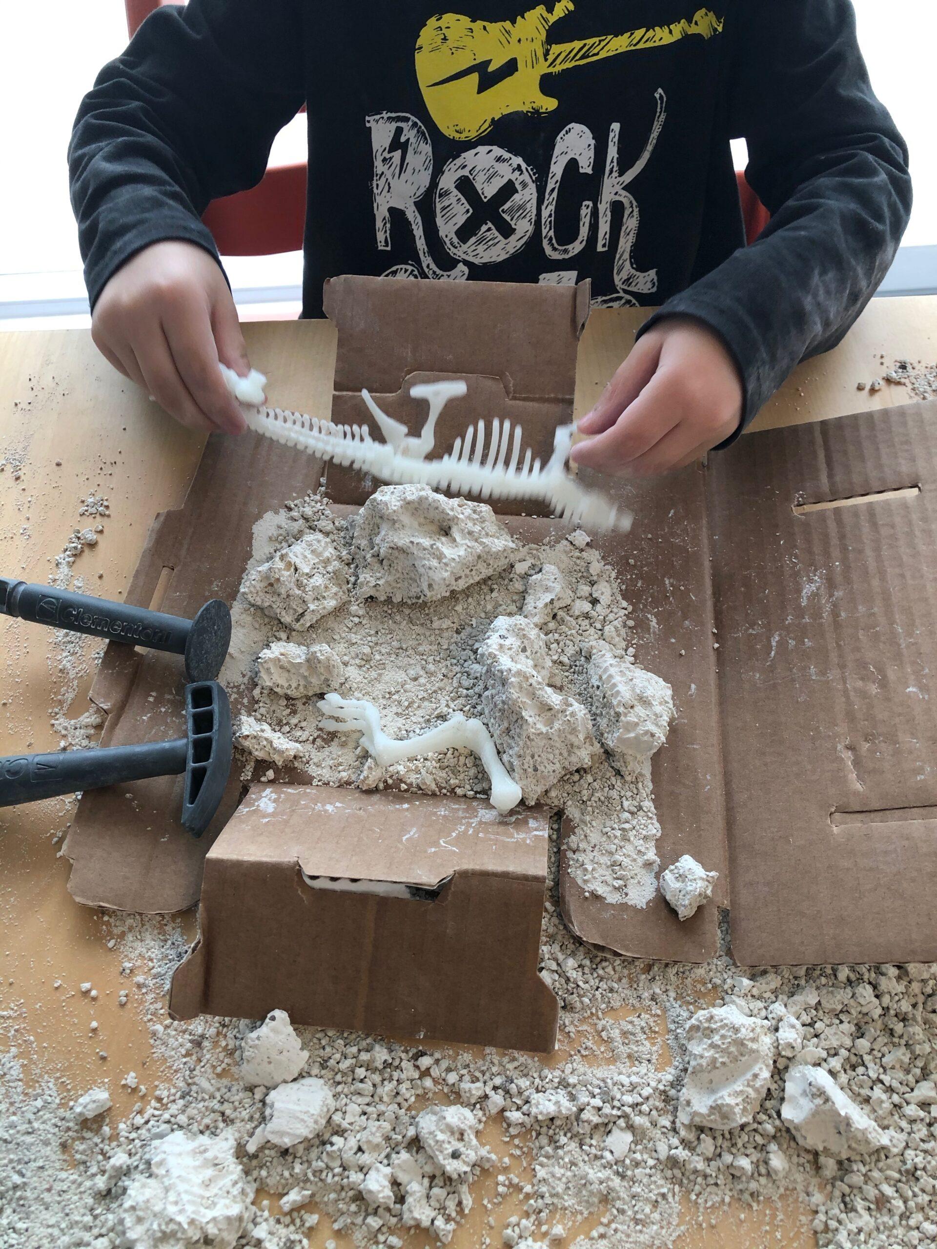 Juego de arqueología para niños